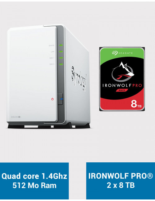 Synology DS220J Serveur NAS IRONWOLF PRO 16To (2x8To)