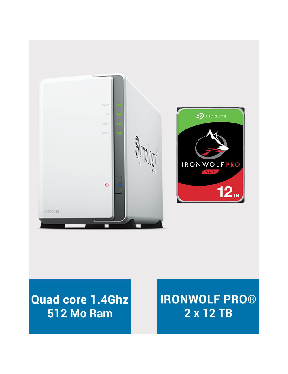 Synology DS220J Serveur NAS IRONWOLF PRO 24To (2x12To)