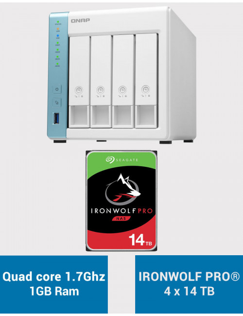 QNAP TS-431K Serveur NAS IRONWOLF PRO 56To (4x14To)