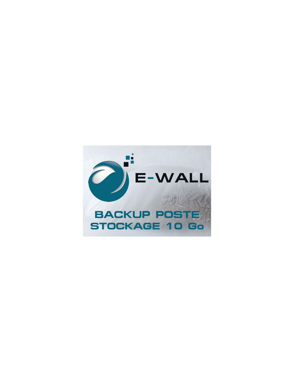 Sauvegarde 1 poste Windows / Linux / MAC - Stockage 10 Go - 1 an