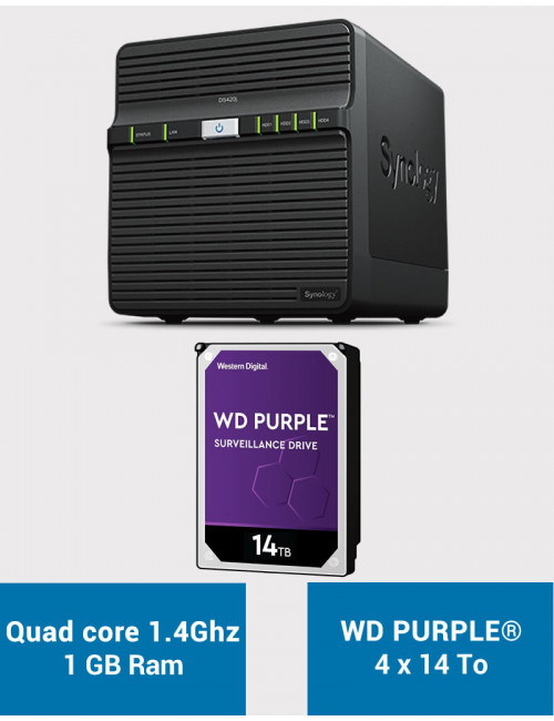 Synology DS420J Serveur NAS WD PURPLE 56To (4x14To)