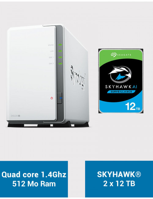 Synology DS220J Serveur NAS SKYHAWK 24To (2x12To)