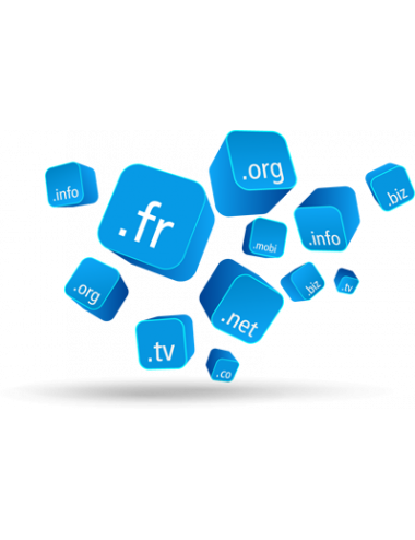 Nom de Domaine .NET - 1 an