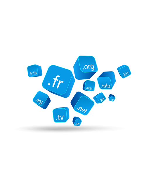 .INFO Domain Name - 1 year