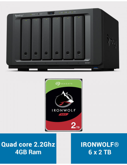 Synology DS1621+ Serveur NAS IRONWOLF 12To (6x2To)