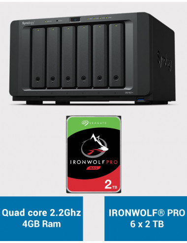 Synology DS1621+ Serveur NAS IRONWOLF PRO 12To (6x2To)