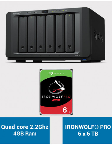 Synology DS1621+ Serveur NAS IRONWOLF PRO 36To (6x6To)