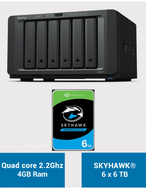 Synology DS1621+ Serveur NAS SKYHAWK 36To (6x6To)