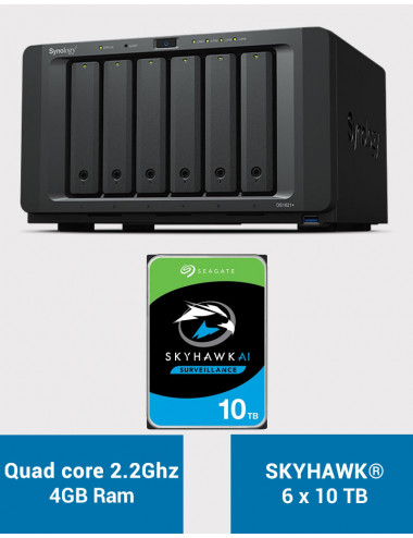 Synology DS1621+ Serveur NAS SKYHAWK 60To (6x10To)