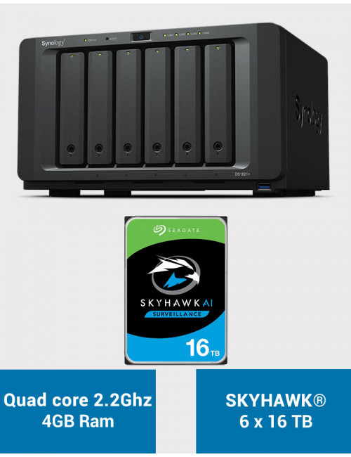 Synology DS1621+ Serveur NAS SKYHAWK 96To (6x16To)