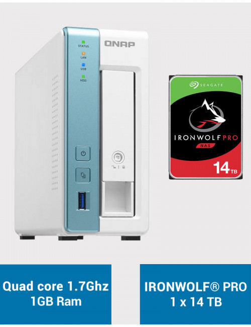 QNAP TS-131K Serveur NAS IRONWOLF PRO 14To (1x14To)