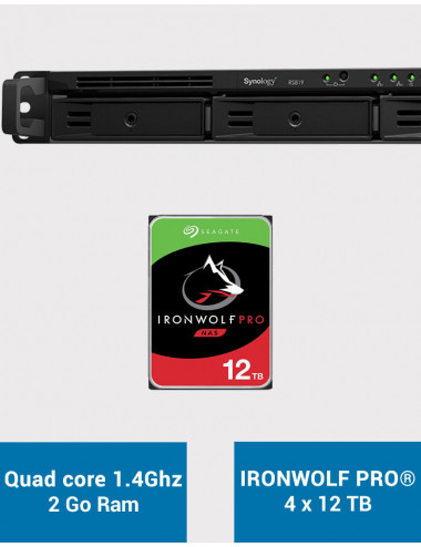 Synology RS819 Serveur NAS IRONWOLF PRO 48To (4x12To)