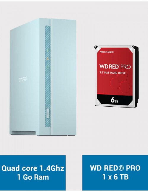 QNAP TS-130 Serveur NAS WD RED PRO 6To (1x6To)