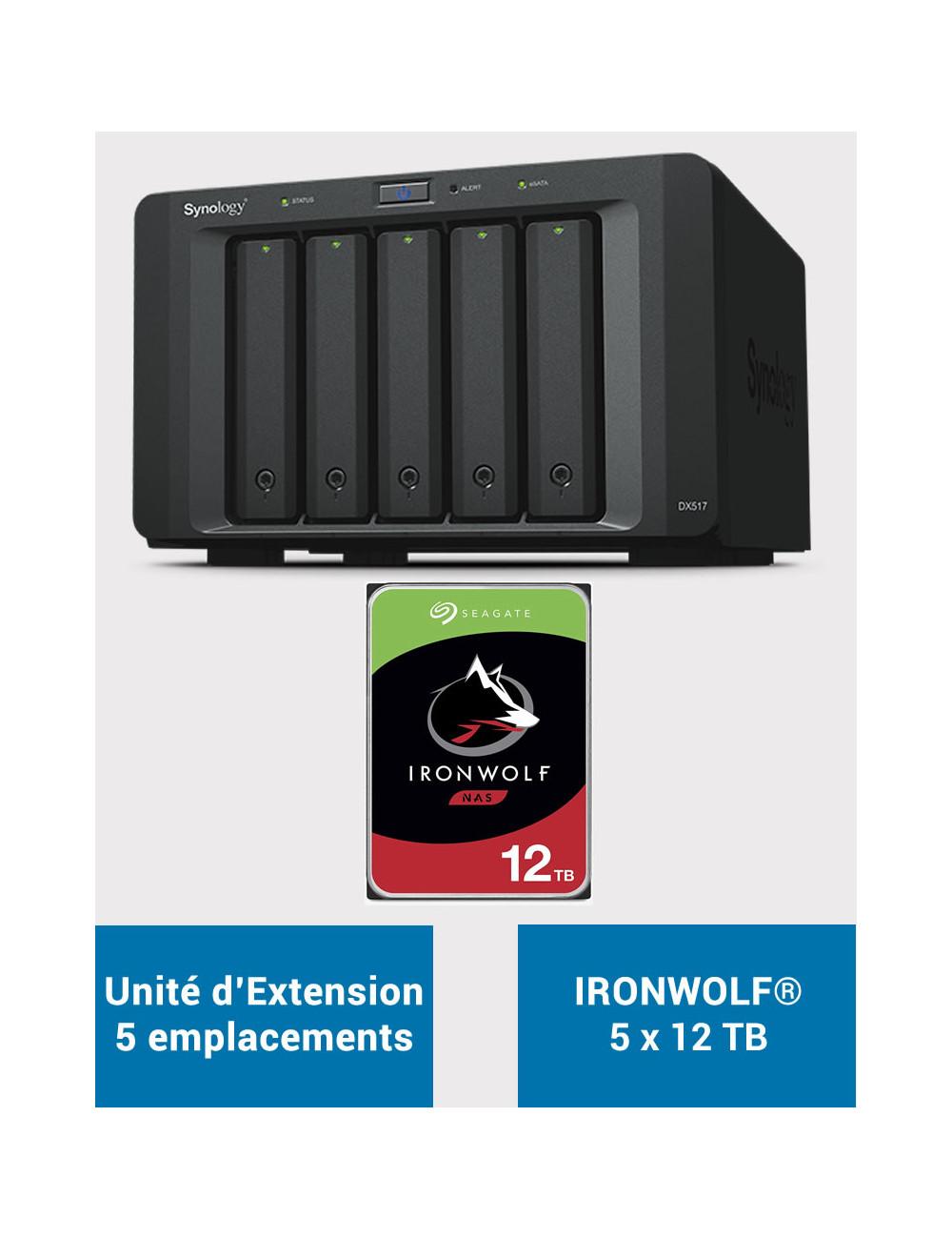 Synology RS217 NAS Server IRONWOLF 24TB (2x12TB)