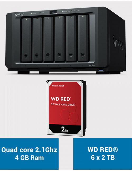 Synology DS1618+ Serveur NAS WD RED 12 To