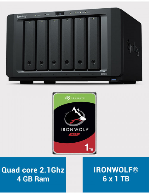Synology DS1618+ Serveur NAS IRONWOLF 6 To