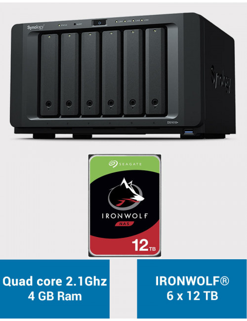 Synology DS1618+ Serveur NAS IRONWOLF 72 To