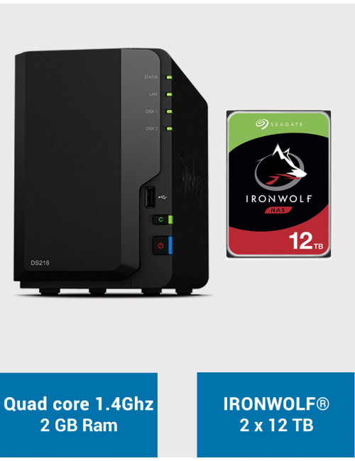 Synology DS218 Serveur NAS IRONWOLF 24To (2x12To)