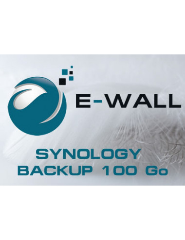 E-WALL SYNOLOGY Server NAS - Backup 100 GB - 1 year