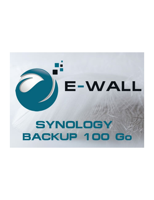 E-WALL SYNOLOGY Serveur NAS - Sauvegarde 100 Go - 1 an