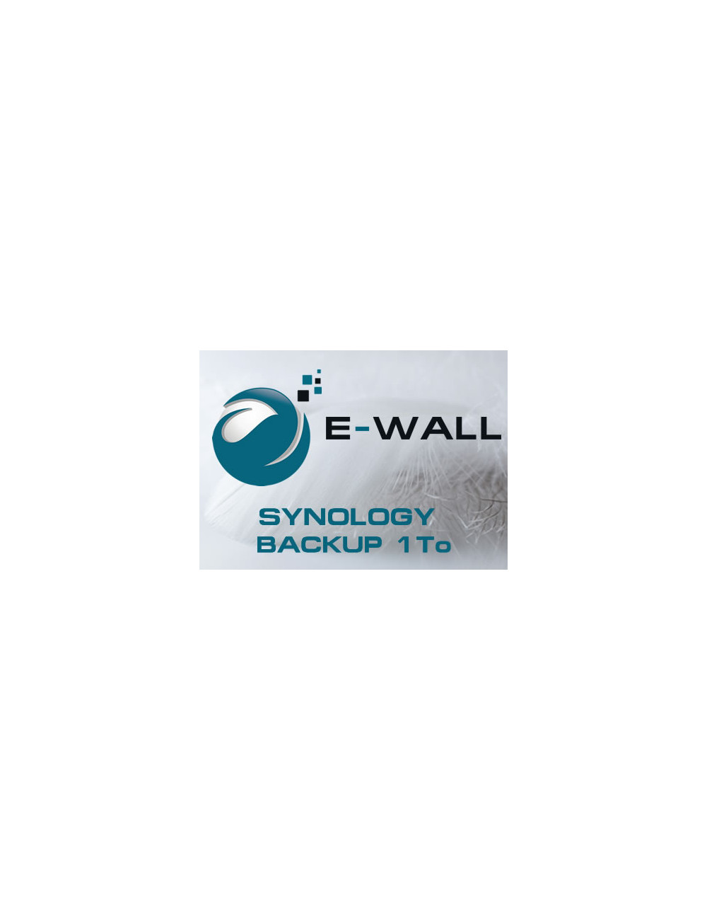E-WALL SYNOLOGY Server NAS - Backup 1 TB - 1 year