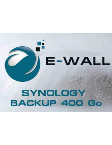 E-WALL SYNOLOGY Serveur NAS - Sauvegarde 400 Go - 1 an
